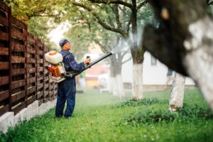 person spraying mosquito spray by trees