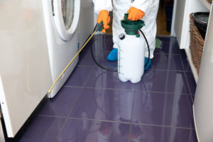 exterminator working in laundry room